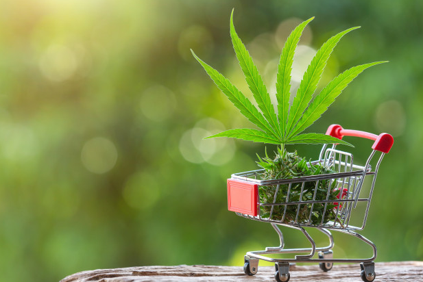 SEO For Cannabis Dispensary